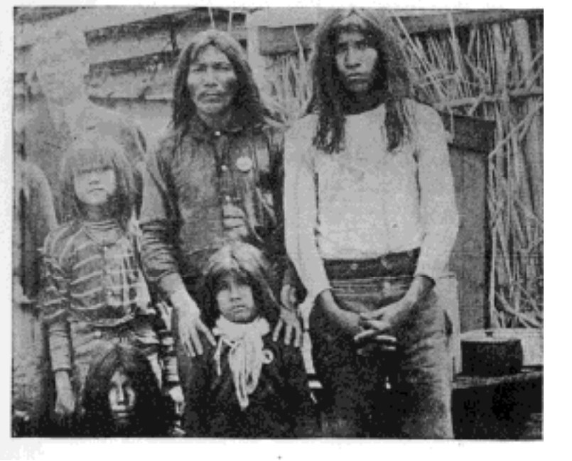 Fig. 6. Mexican Indians